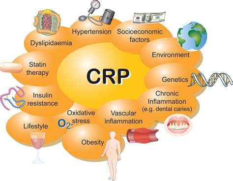 c protein high what is crp c reactive protein test