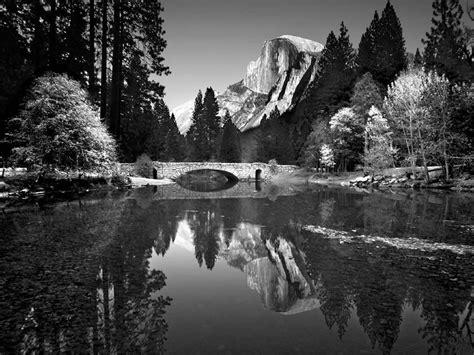 photo nature noir et blanc