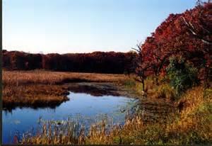 fall colors mn minnesota fall color