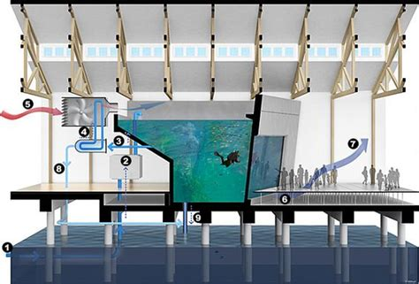 aquarium design application cooling system aquarium and knowledge on pinterest