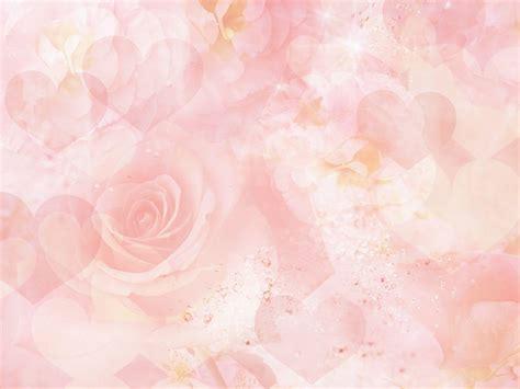 wallpaper background rose pink rose backgrounds wallpaper cave