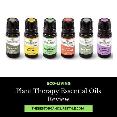 plant therapy essential oils find best essential diffuser for large rooms the best