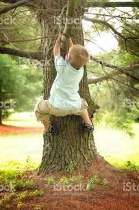 boys tree boy climbing a tree stock photo 471104501 istock