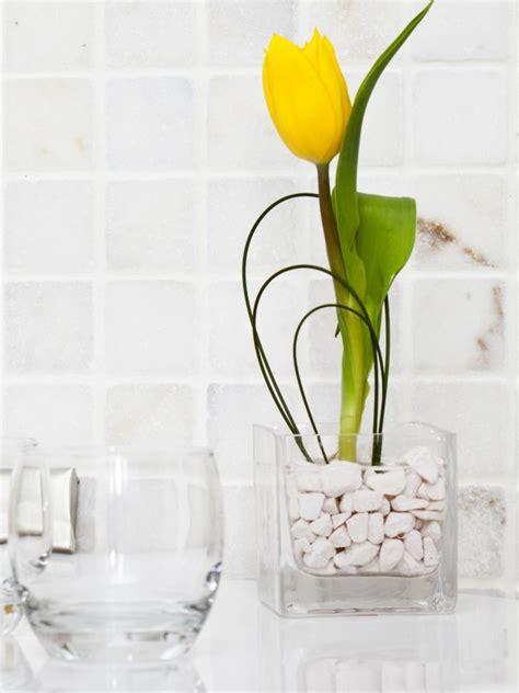 piante da arredo piante da bagno come sceglierle in base all esigenza