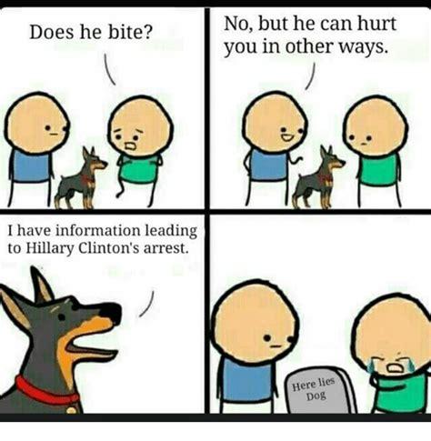 Dog Bite Meme - 25 best memes about does he bite does he bite memes
