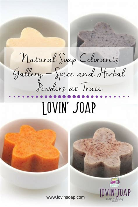 soap colorants soap colorants gallery spice and herbal powders