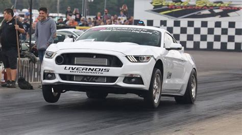 mustang levels levels performance 2015 2016 ford mustang ecoboost race