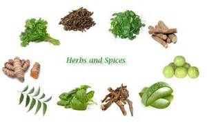 10 common herbs and spices used in ayurveda giirvani