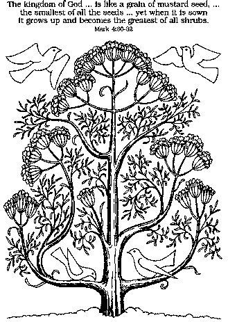 mustard tree coloring page 91 best mustard seed parable crafts images on pinterest