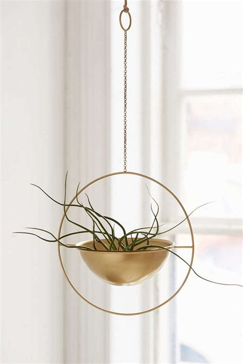 Window Plant Hanger - 149 best garden plants images on plants