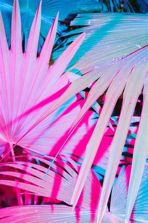 neon wallpaper pinterest m 225 s de 1000 ideas sobre fondos de escritorio de ne 243 n en