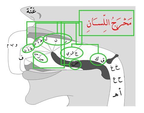 Bisa Quran Otodidak Belajar Membaca Al Quran ayo mengenal tajwid dalam al quran belajar al qur an