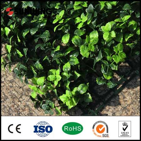 The Ordinary Matrixyl Size Ready new artificial hedges is ready for sale sunwing