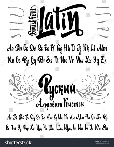 image gallery latin lettering font vector alphabet cyrillic latin calligraphic font stock