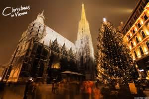 weihnachtsbaum wien in vienna photos wallpaper tactic media
