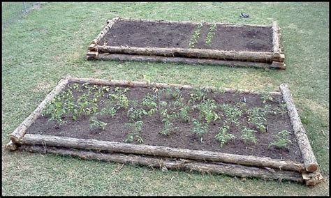 build a raised garden bed from logs diy projects for