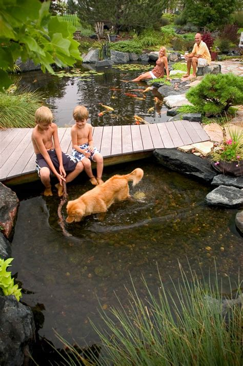 how to build a fish pond in your backyard tips for designing a backyard pond building moxie
