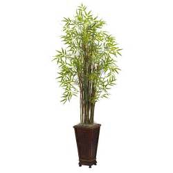 5 5 grass bamboo silk plant with decorative planter