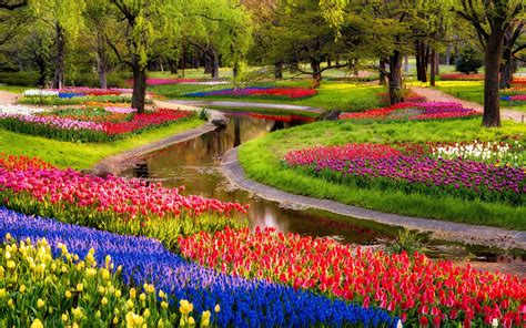 Gardens Of Flowers Beautiful Garden Of Flowers Wallpaper