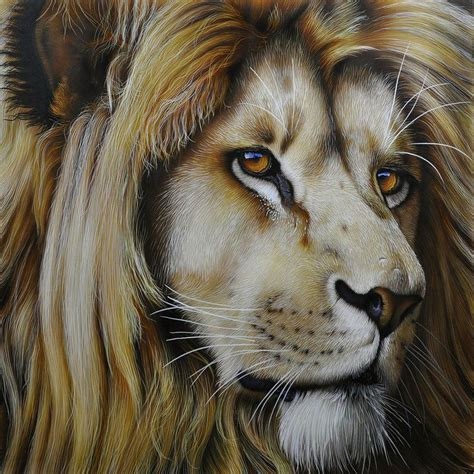 lion print lion print by jurek zamoyski lion painting lion and