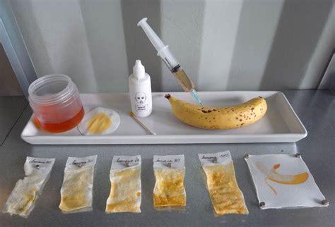 food analysis food analysis bromatology