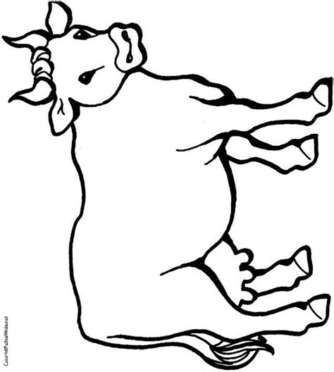 cow spots coloring page 15 best images about paint on pinterest cartoon cow