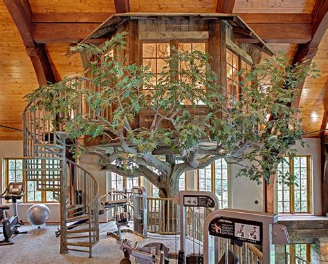 indoor house tree indoor tree house review best house design indoor tree