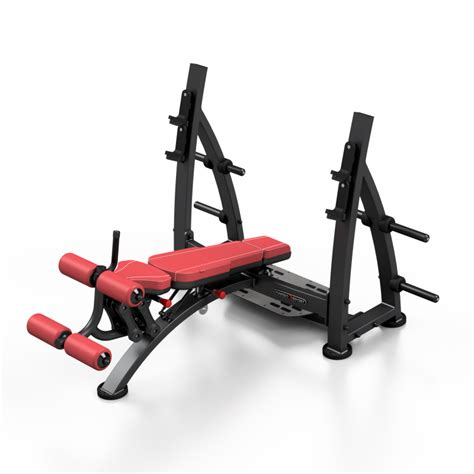 Banc Musculation Pro by Banc Musculation Professionnel Disportex
