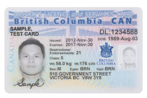 service card template bc services card your care card and more tranbc