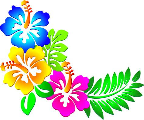 free printable hibiscus flowers free printable hawaiian flower borders joy studio design