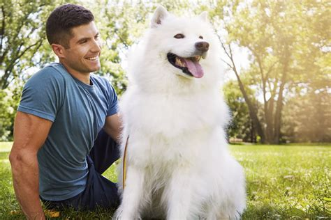 guys with puppies guys with dogs is all you need so it s all we re giving you unleashed