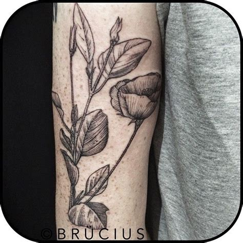 tattoo etching pattern 77 best etching tattoos images on pinterest tattoo ideas