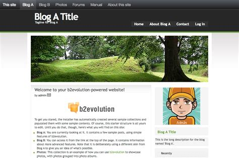 blogger forum b2evolution blog social cms a complete engine for your