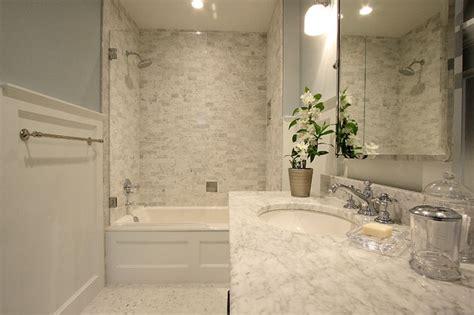 carrara marble guest bathroom traditional bathroom