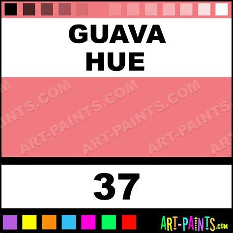 what color is guava guava graffiti spray paints aerosol decorative paints