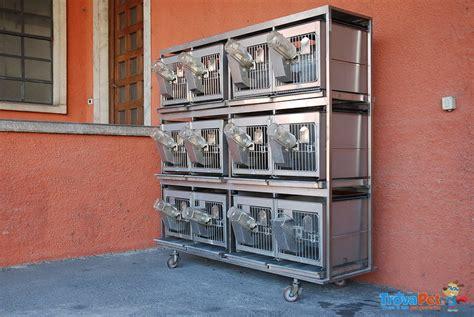 gabbia conigli usata gabbia per conigli e piccoli animali in vendita a bergamo bg