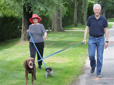 bills dogs power walk bill and clinton take their dogs for a stroll nbc news