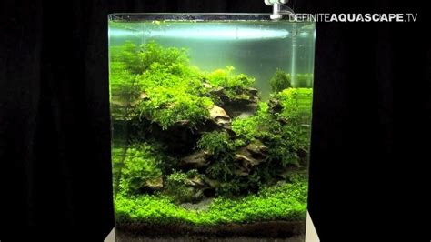 Nano Aquascaping by Aquascaping The Of The Planted Aquarium 2013 Nano Pt