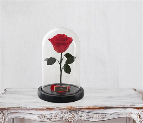forever rose in glass dome beauty and the beast rose forever rose rose in glass dome