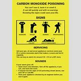 Carbon Monoxide Poisoning Body | 423 x 605 jpeg 48kB