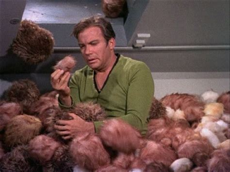 trek tribbles the trouble with wearing tribbles auntie fashion