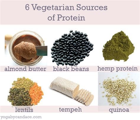 6 protein sources vegetarian sources of protein with recipes yogabycandace