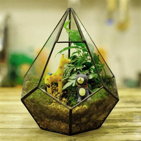 Terrarium Kaca Glass Terrariums Triangle succulent plant triangle greenhouse glass terrarium diy micro landscape glass bottle alex nld
