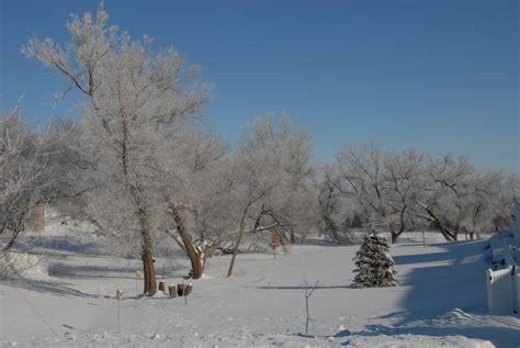 january   winter scenery