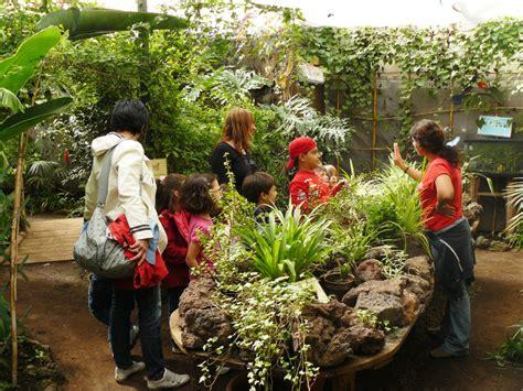 la casa delle farfalle catania casa delle farfalle parco monteserra