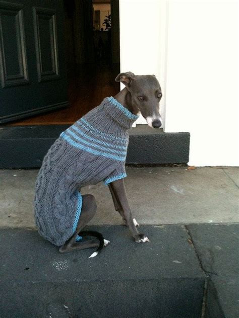 knitted greyhound sweater pattern 22 best greyhound whippet sweaters images on pinterest