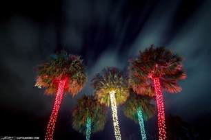 christmas tree lights south florida style at snug harbor drive