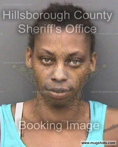 Cheatham County Arrest Records Roberta Rene Cheatham Mugshot Roberta Rene Cheatham Arrest Hillsborough County Fl