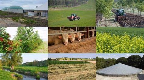 chambre r馮ionale d agriculture bretagne dix solutions pour r 233 duire l empreinte carbone des