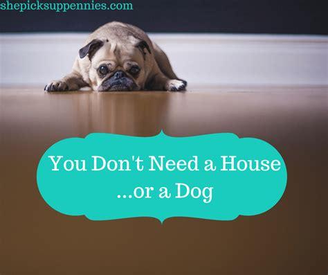 i don t want to buy a house you don t need to buy a house or a dog
